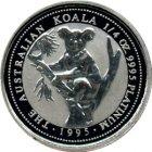 Kleines Bild von 1oz Koala in Platin