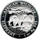 Kleines Bild von Somalia Elefant 1oz Silber 2013