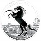 Kleines Bild von Stock Horse 2013 1oz Silber