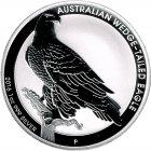 Kleines Bild von Wedge-Tailed Eagle 2016 1oz Silber