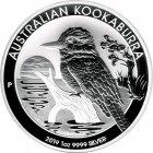 Kleines Bild von Kookaburra 2019 1oz Silber