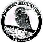 Kleines Bild von Kookaburra 2021 1oz Silber